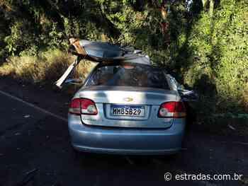 Colisão frontal mata quatro pessoas na SC-163, em Itapiranga - Estradas