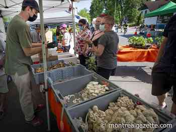 Marché BEAU in Beaconsfield part of West Island and off-island's growing network of seasonal farmers' markets - Montreal Gazette