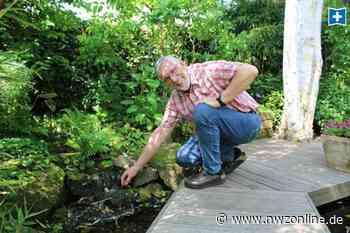 Gärten in der Wesermarsch entdecken: Spiel von Licht und Schatten in Brake - Nordwest-Zeitung