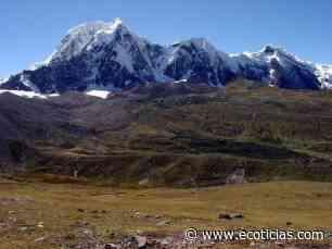La fotosíntesis desde los Andes Peruanos - ECOticias.com