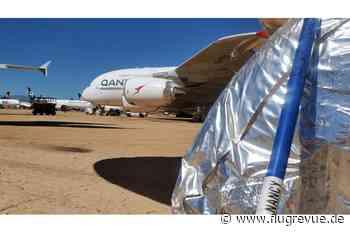 Qantas-Superjumbos: Schlangen und Skorpione nisten sich in A380 ein - FLUG REVUE
