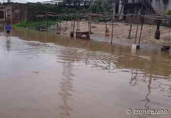 Cinco sectores inundados tras fuertes lluvias en Barrancas del Orinoco en Monagas - Crónica Uno