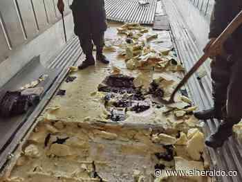Hallan 443 kilos de cocaína en bodega de Santa Marta - EL HERALDO