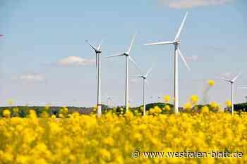 Windkraft: Rechtsunsicherheiten im Flächennutzungsplan sollen vermieden werden: Borchen will zurückhaltend planen - Borchen - Westfalen-Blatt - Westfalen-Blatt