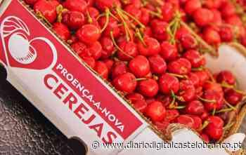 Uma tonelada de cerejas distribuída em Proença-a-Nova - Diário Digital Castelo Branco