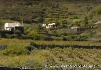 Pantelleria, Si è spenta Teresa Gabriele: era la regina dei mustazzoli e dei ravioli nella sua casa a Runcune Pigna - Il Giornale Di Pantelleria