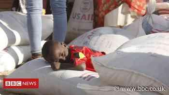 Ethiopia's Tigray crisis: UN aid chief says there is famine
