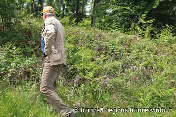 Fougères : un corps retrouvé au pied d'une falaise - France 3 Régions