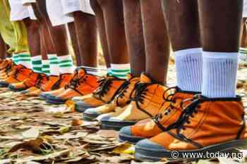 House committee: NYSC won't be scrapped
