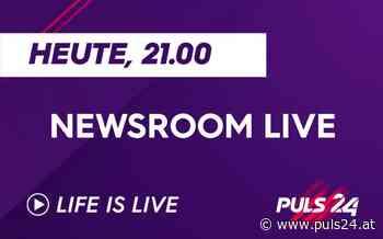 Newsroom LIVE am Montag mit Rechtsanwalt Alfred Noll - puls24