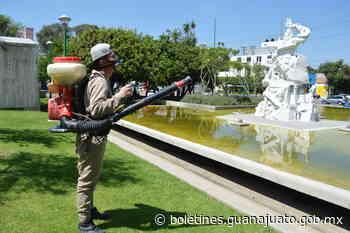 SSG notifica 2 casos de dengue no grave en Salamanca y Romita - Noticias Gobierno del Estado de Guanajuato