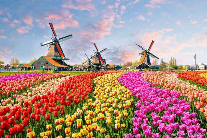 Einreise in die Niederlande ohne PCR-Test