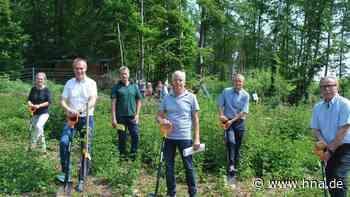 Rotaryclub spendet 200 Bäume für den Stadtwald in Bad Arolsen - HNA.de