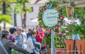 """Dall'Anteprima del """"Merano WineFestival"""" al ritorno dei Saloni, con """"Radici del Sud"""", gli eventi - WineNews"""