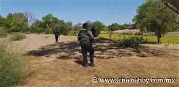 Identifican a mujeres que localizaron asesinadas en el rio de San Miguel en Ahome. - Sinaloahoy