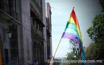 Matrimonios gay aún son pocos por año - El Sol de Orizaba