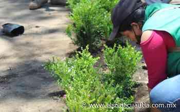 Enchula Cuernavaca el parque Cuauhtémoc - El Sol de Cuautla