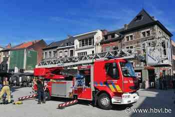 Verzwakte slechtvalk van dak gered door brandweer (Sint-Truiden) - Het Belang van Limburg Mobile - Het Belang van Limburg