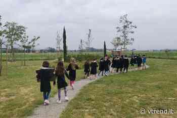 Calcinaia, scuola terminata, gli studenti raccolgono i frutti ... della terra - VTrend.it