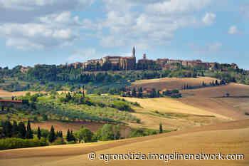 Toscana, Montepulciano e Pienza tra i paesaggi rurali storici - Agronotizie