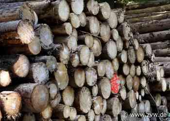 Holzknappheit bremst Bauvorhaben der Gemeinde Remshalden aus - Remshalden - Zeitungsverlag Waiblingen