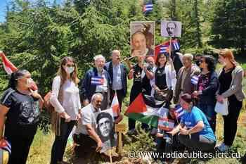 Una imagen, una historia: En el Líbano nace el cedro Fidel Castro - Radio Cubitas