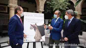 Exposición de la Hermandad de la Merced en el Círculo - Diario Córdoba