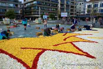 Voorbereidingen voor volwaardige bloemencorso zijn begonnen ... (Blankenberge) - Het Nieuwsblad