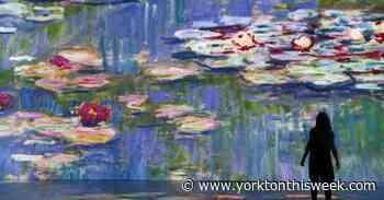 Monet masterpieces set to get the massive immersive treatment, Toronto premiere - Yorkton This Week