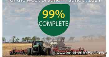 Seeding just about complete in local region - Yorkton This Week