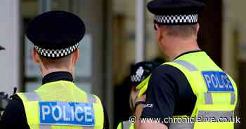 Man arrested after allegedly stealing handbag and making threats