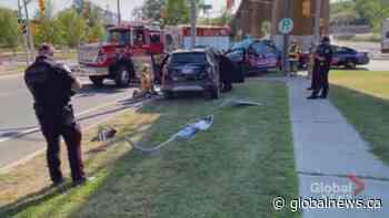 Port Hope crash sends one to hospital   Watch News Videos Online - Globalnews.ca