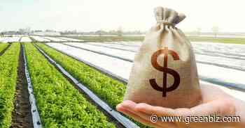 The right way to spend patient capital for food reform | Greenbiz - GreenBiz