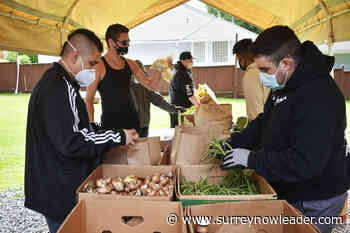 South Surrey charity keeps 158000 kg of edible food out of landfill every year – Surrey Now-Leader - Surrey Now Leader