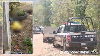 Localizan a hombre degollado - Diario de Chiapas