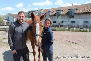 BINNENKIJKEN. Ex-Buffalo opent prachtige bed and breakfast tussen de paarden in Deurle