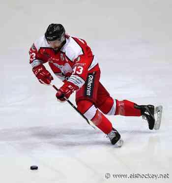 Nächster Neuzugang bei den Ice Dragons - Eishockey.net