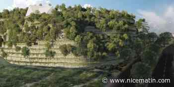 A Valbonne, Open Sky met du numérique à la place des filières vertes - Nice-Matin