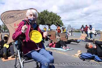 PHOTOS: Seniors block BC legislature streetfront in old-growth solidarity protest – Ladysmith Chronicle - Ladysmith Chronicle
