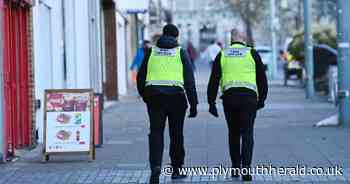 Covid marshals to patrol Plymouth throughout the summer - Plymouth Live