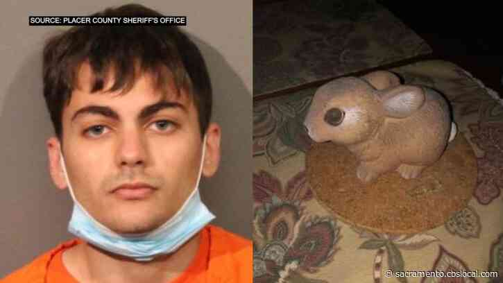 Suspect Who Broke Into Home Using Ceramic Rabbit Held At Gunpoint By Homeowner Until Deputies Arrive