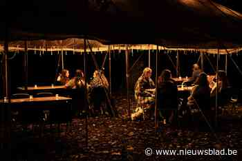 Gemeente krijgt nieuw festival aan vrijetijdscentrum dankzij... (Overijse) - Het Nieuwsblad