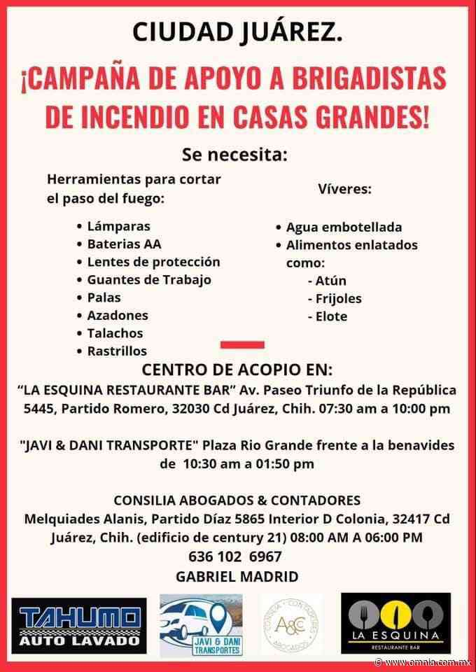 Solicitan apoyo para brigadistas contra incendios en Casas Grandes - Omnia