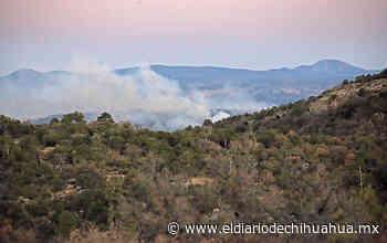 Sin control, incendio en Nuevo Casas Grandes - El Diario de Chihuahua
