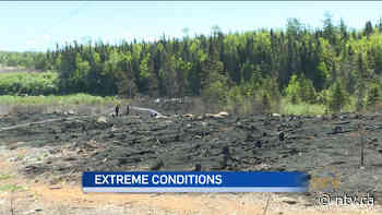 Fast action by Grand Falls-Windsor Fire Department limits brush fire damage - ntv.ca - NTV News