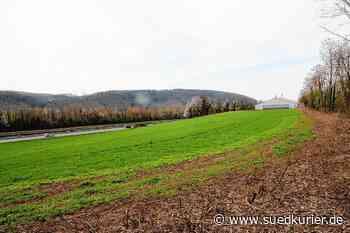 """Albbruck/Wehr: Zwei neue Gewerbehallen sind im Albbrucker """"Rütte-Allischmatten"""" geplant - SÜDKURIER Online"""
