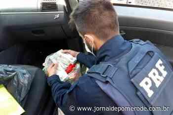 PRF prende homem com cerca de R$ 520 mil em notas falsas na BR-101, em Itajaí - Jornal de Pomerode