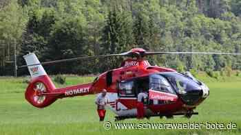 Schwerer Unfall in Sulz - Harley-Fahrer nach Kollision mit Reh schwer verletzt - Schwarzwälder Bote