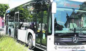 Mit dem Bus durchs Dorf segeln - http://www.wohleranzeiger.ch/