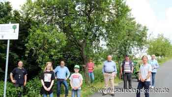 Dorfgemeinschaft Illeschlade betreut seit 25 Jahren Obstbaumreihe - sauerlandkurier.de